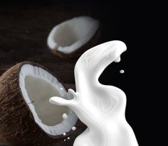 coconut-milk-1623611__340