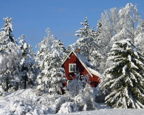 _downloadfiles_wallpapers_1280_1024_winter_in_sweden_wallpaper_winter_nature_1305