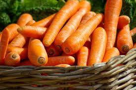 carotte (1)
