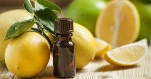 téléchargement huile essentiel de citron(1)